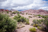 Calico Basin area of Red Rock Canyon National Conservation Area