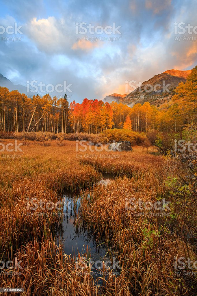 California Autumn, Lundy Canyon stock photo