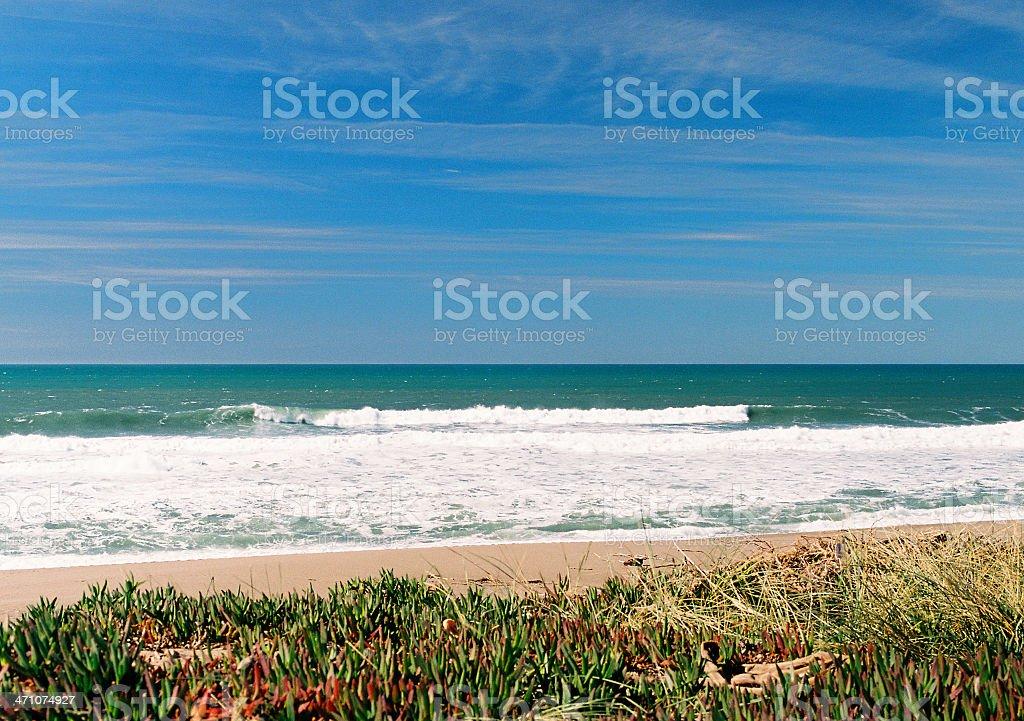 California beach scene royalty-free stock photo