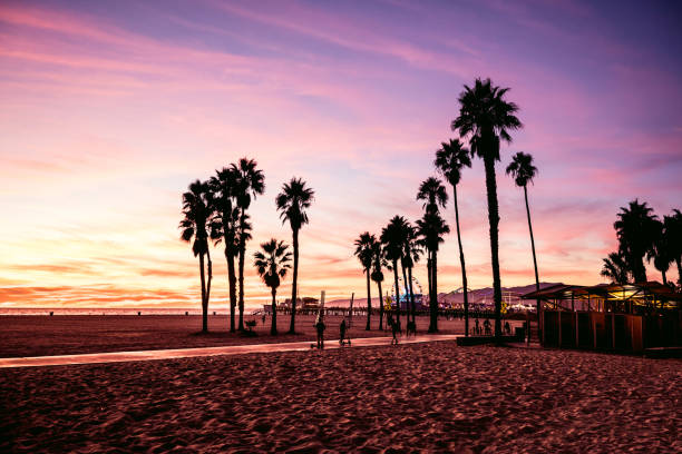 California beautiful sunset in Santa Monica - Los Angeles California beautiful sunset in Santa Monica - Los Angeles, USA. venice beach stock pictures, royalty-free photos & images