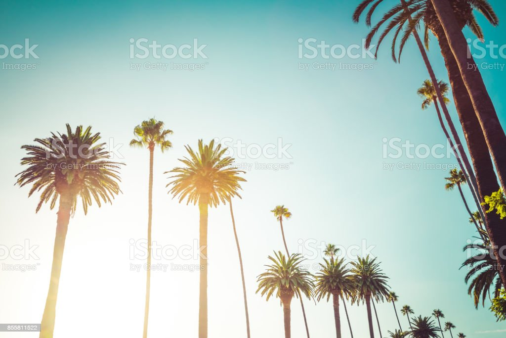 California Beverly Hills Luxury Lifestyle stock photo