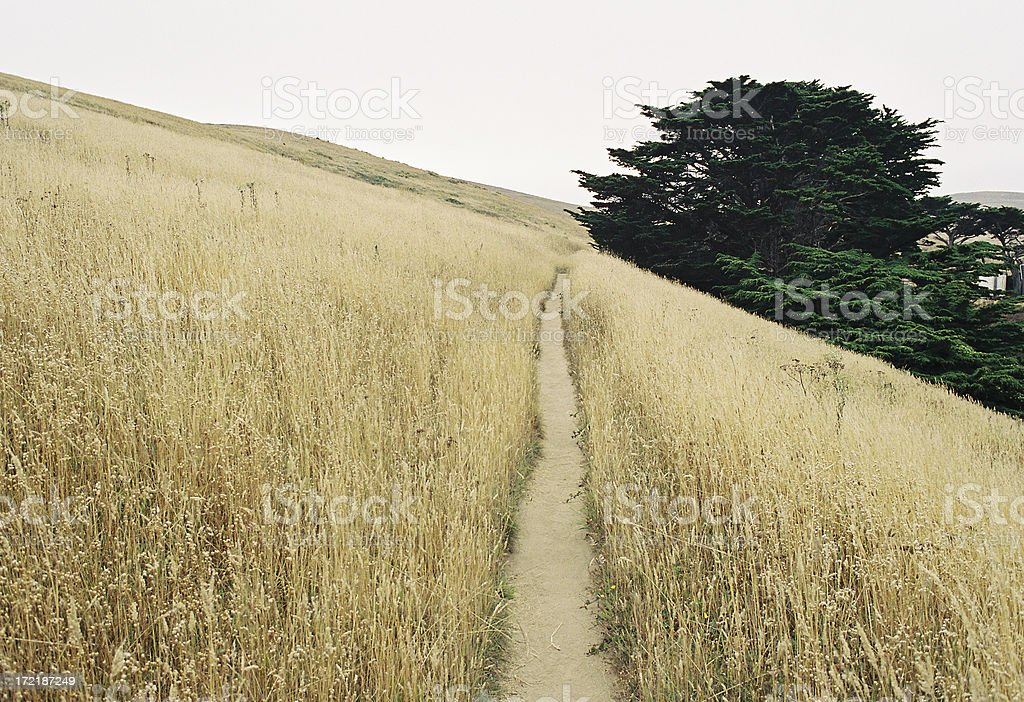California coast hikingTrail stock photo