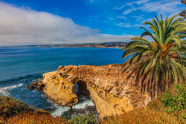 california coast shoreline with cliffs at la jolla - bay of water stock pictures, royalty-free photos & images
