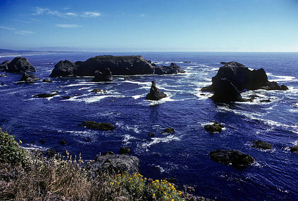 California Coastline Rocks and surf in Northern California on a beautiful, sunny day. Wildflowers can be seen in the foreground. hearkencreative stock pictures, royalty-free photos & images