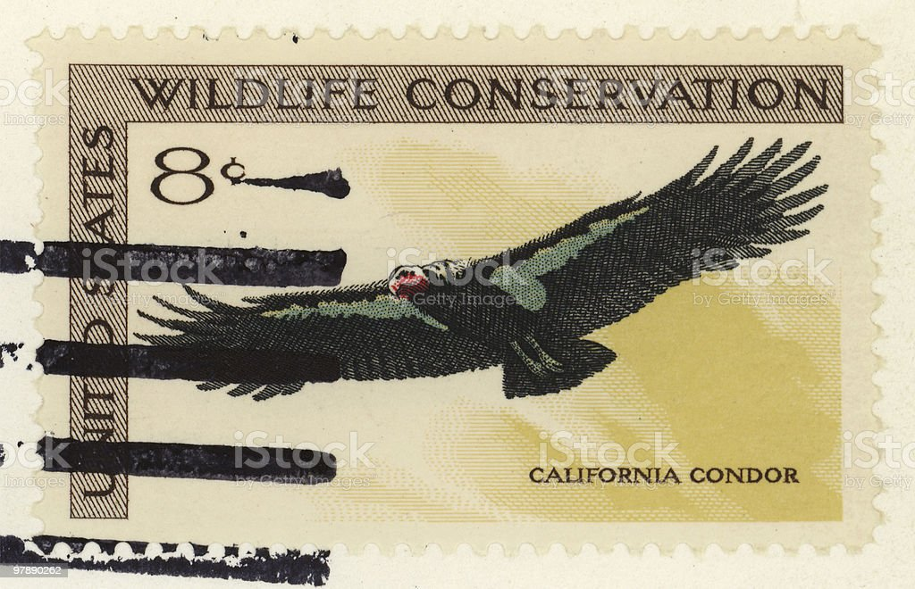 California Condor Stamp royalty-free stock photo