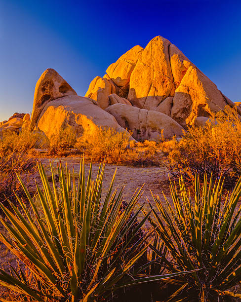 California desert at sunset Joshua Tree National Park Dawns first light warms the rock outcroppings of Joshua Tree National Park, CA mojave desert stock pictures, royalty-free photos & images