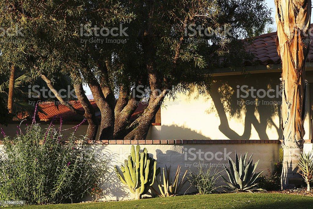 California Desert Backyard Landscape stock photo