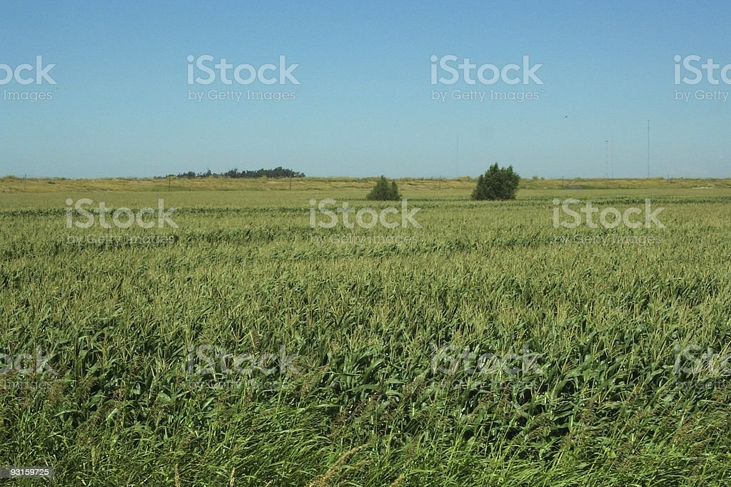 California Farm royalty-free stock photo