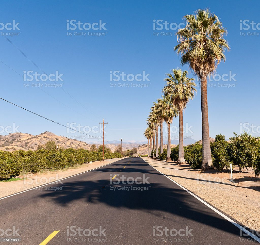 California highway with palm trees stock photo