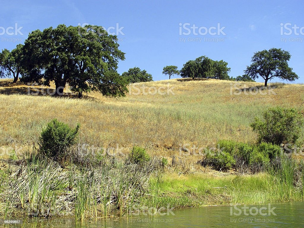 California hills (4) - Royalty-free Agricultural Field Stock Photo