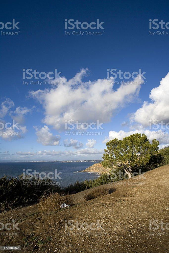 California-Vista al mar foto de stock libre de derechos