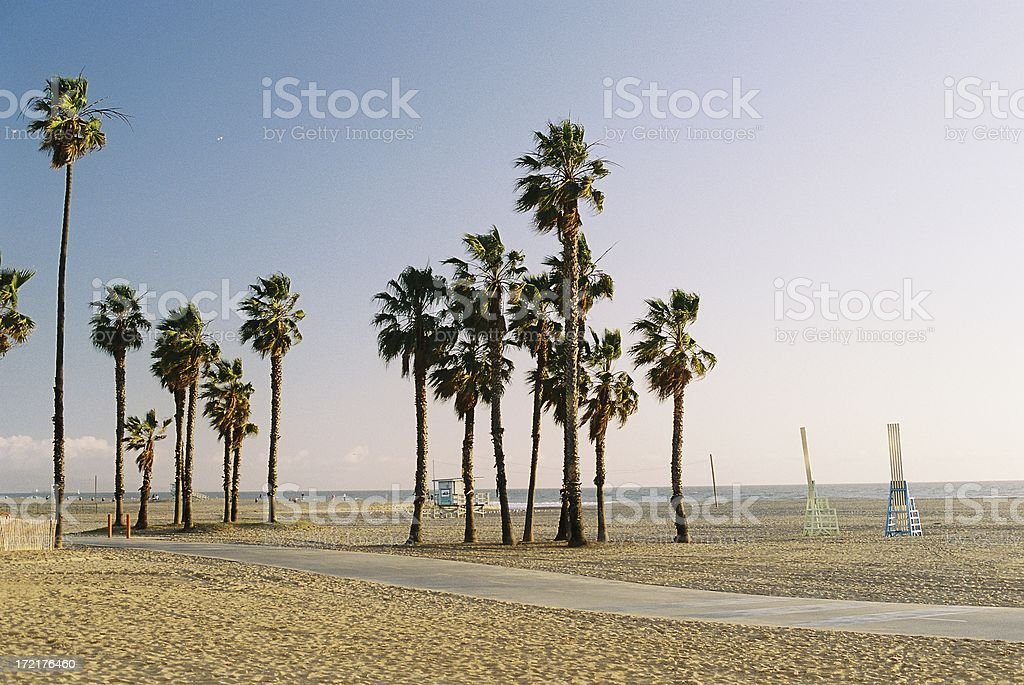 California Pacific ocean palm trees and beach bike trail royalty-free stock photo