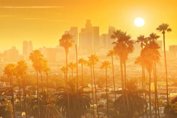california - los angeles стоковые фото и изображения