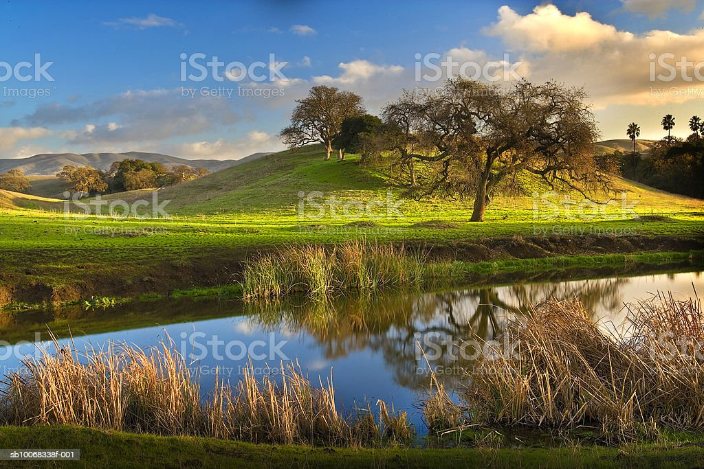 USA, California, San Benito County, pond and trees royalty-free 스톡 사진