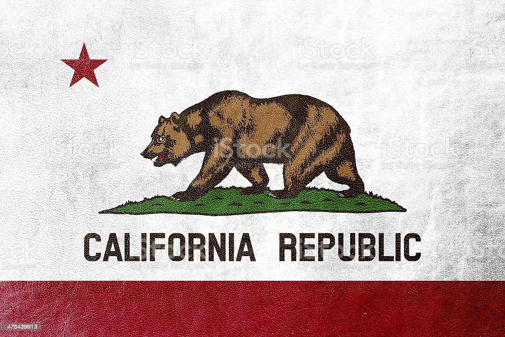 California State Flag painted on leather texture stock photo