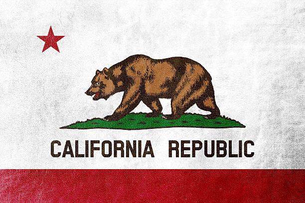 California State Flag pintado en cuero con textura - foto de stock