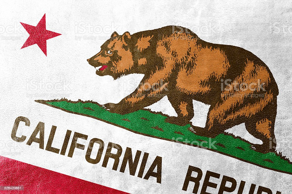 California State Flag Painted On Leather Texture Stock Photo More