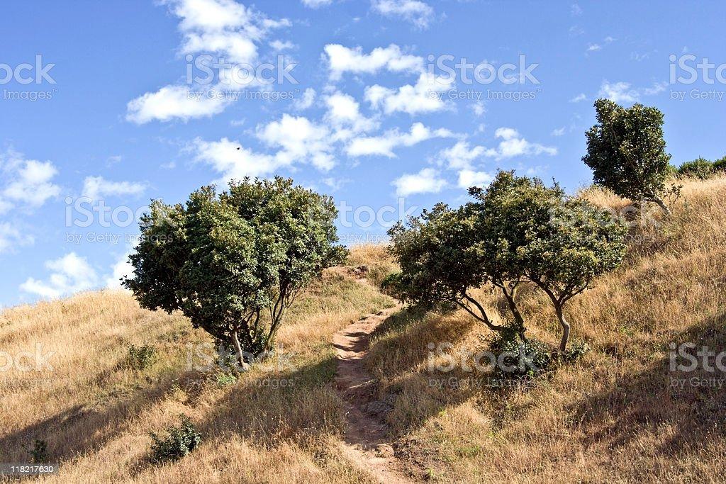 California Summer Hills royalty-free stock photo