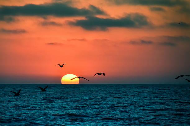 California sunset stock photo