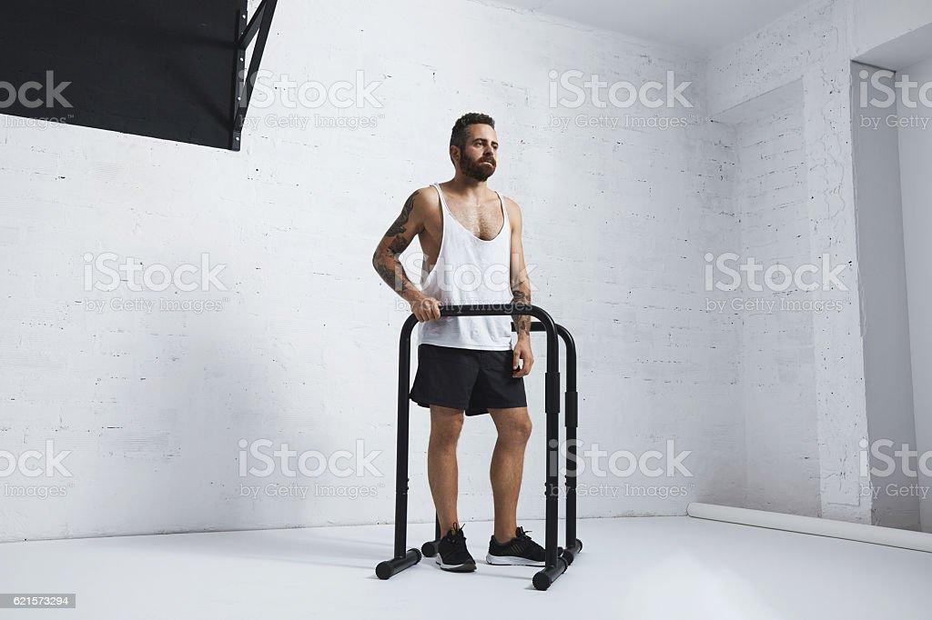 Calisthenic and bodyweight exercises photo libre de droits