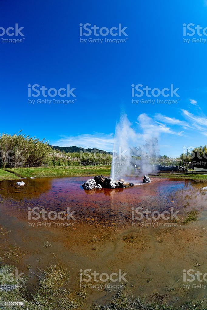 Calistoga Geyser stock photo