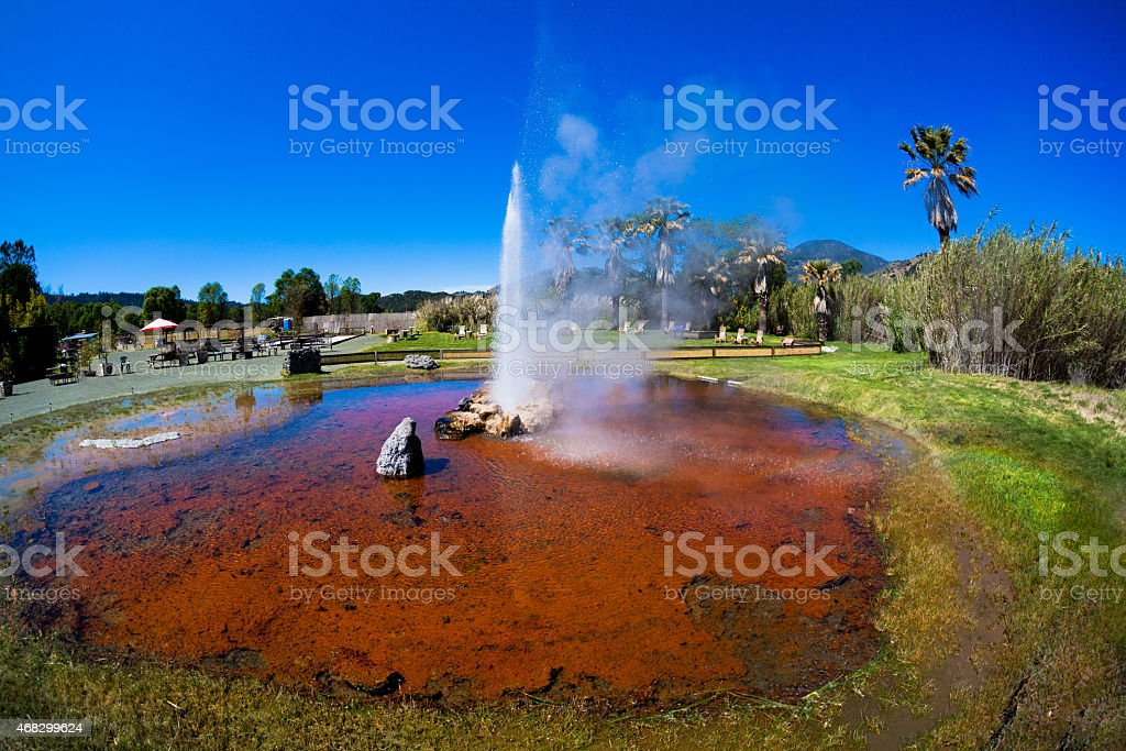 Calistoga Old Faithful Geyser stock photo
