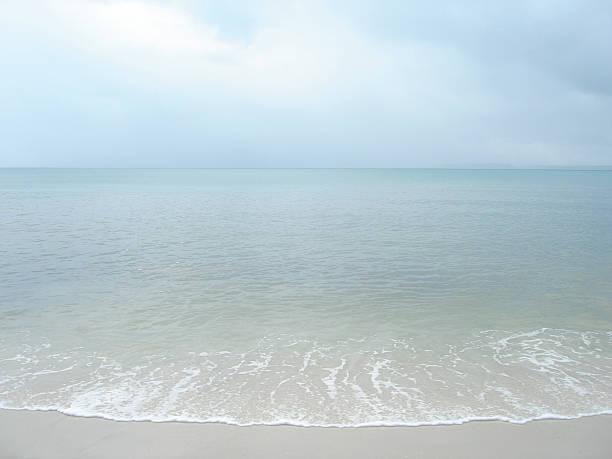 Rufen Sie vom Meer – Foto