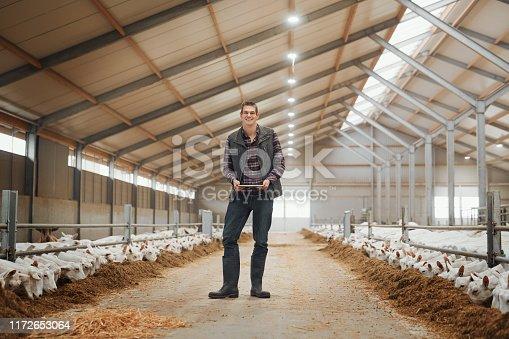 istock Call it a digital dairy farm 1172653064