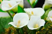 Calla flower bouquet