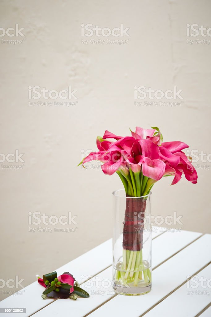 Calla lily royalty-free stock photo