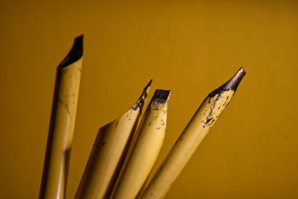 Calligraphy pens covered in ink against a yellow background Calligraphy reeds (qalam) covered in ink against a yellow background calligraphy stock pictures, royalty-free photos & images