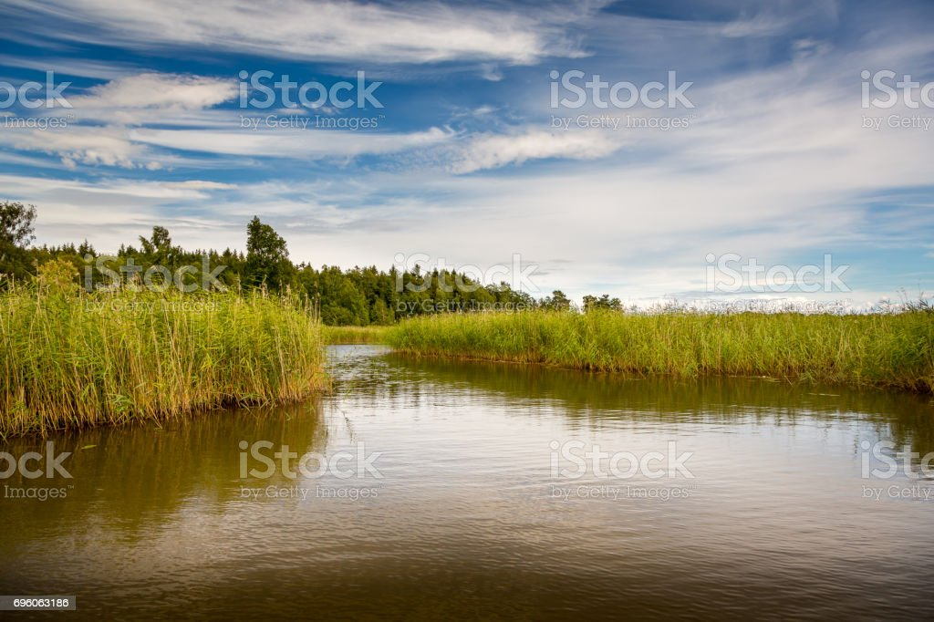 Calm and moody seascape view of reed, water and cloudy sky. stock photo