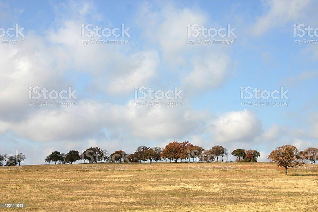 Calm Cloudy Dreamy Feild royalty-free stock photo