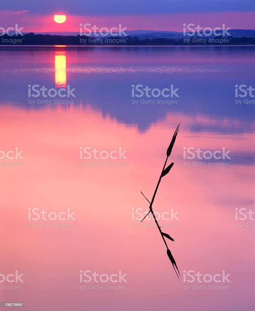 Calm Lake at Sunset royalty-free stock photo