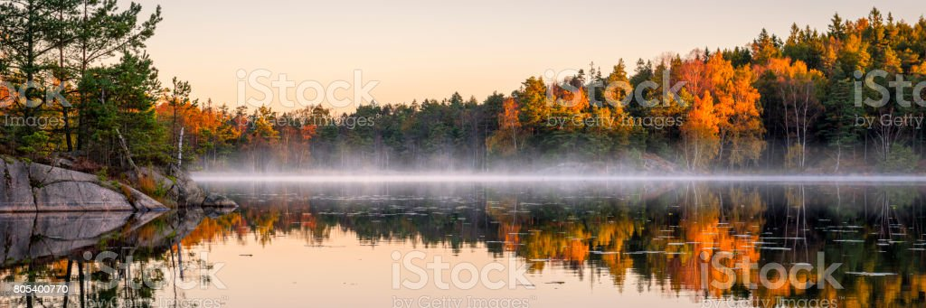 Calm lake in the forest stock photo