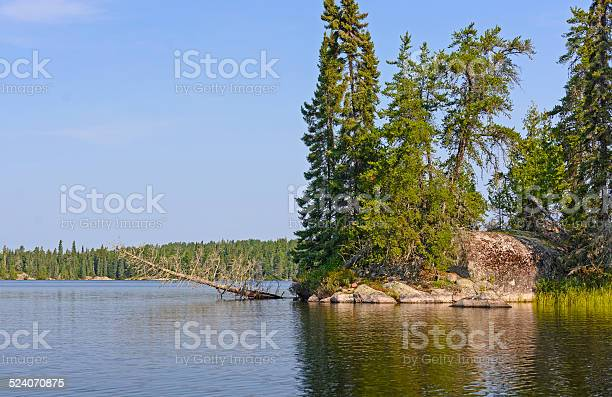 Photo of Calm Lake in the Wilderness