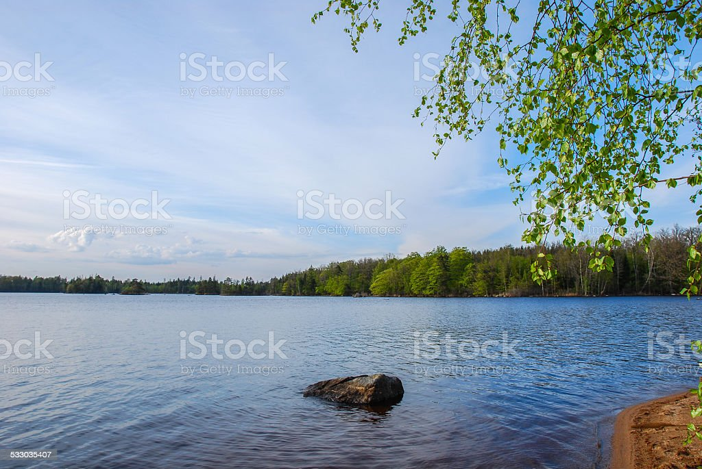 Calm lake in the woodland stock photo