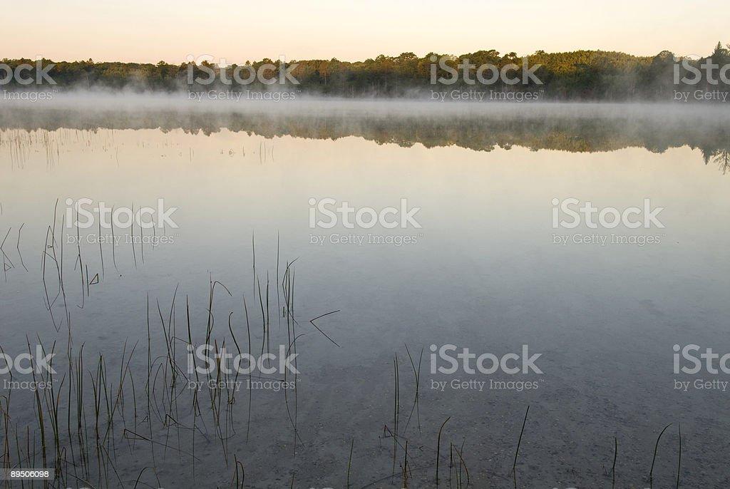 Calme Lac photo libre de droits