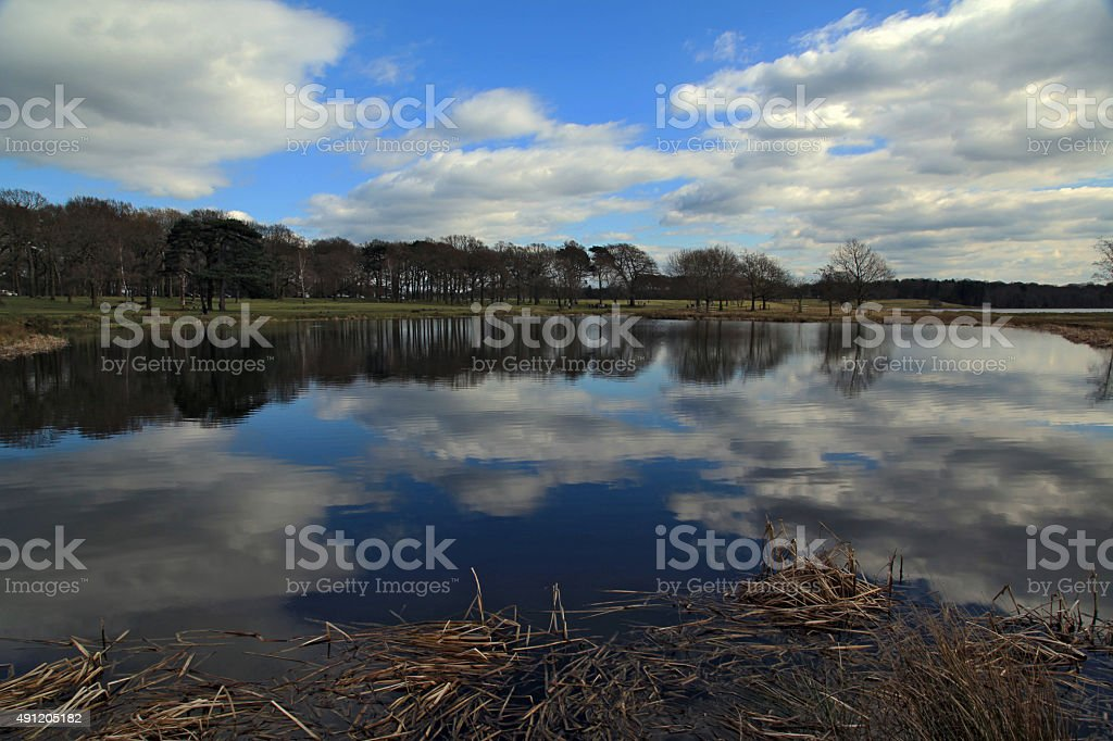 Calm Lake Reflections - Royalty-free 2015 Stock Photo