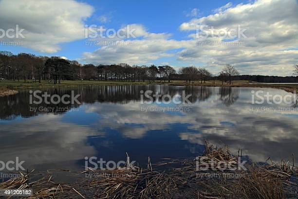Calm Lake Reflections Stock Photo - Download Image Now