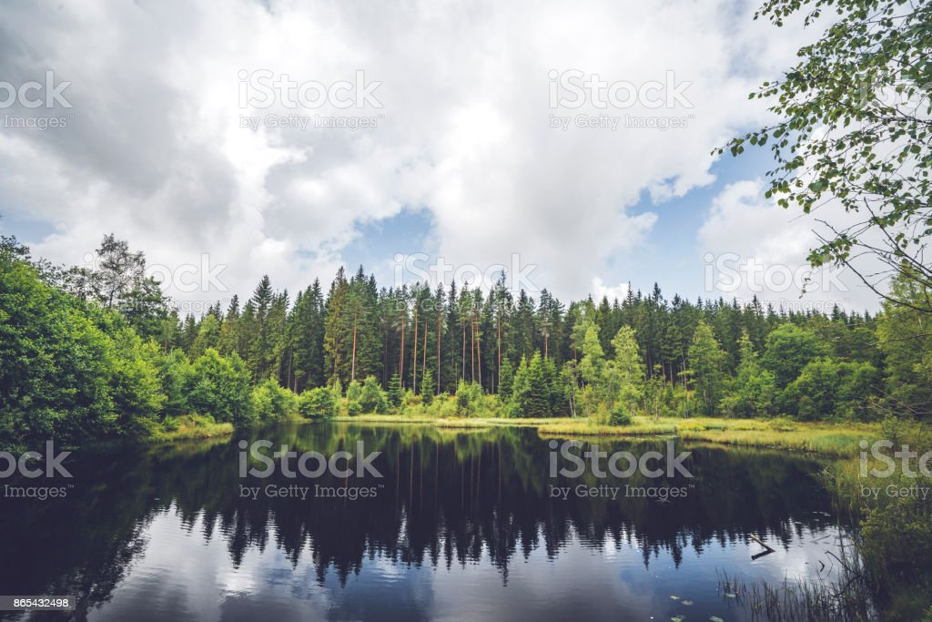 Calm lake wirh dark water in the middle of a forest stock photo