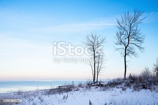 Two leafless trees along the frozen shoreline of Wasaga Beach (Georgian Bay) at sunrise during a deep freeze.