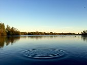 Gentle ripples across a tranquil blue lake at sunset. Attenborough Nature Reserve in Beeston, Nottingham.