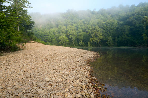 Calm river by misty forest Tranquil scene of river by misty green forest riverbank stock pictures, royalty-free photos & images