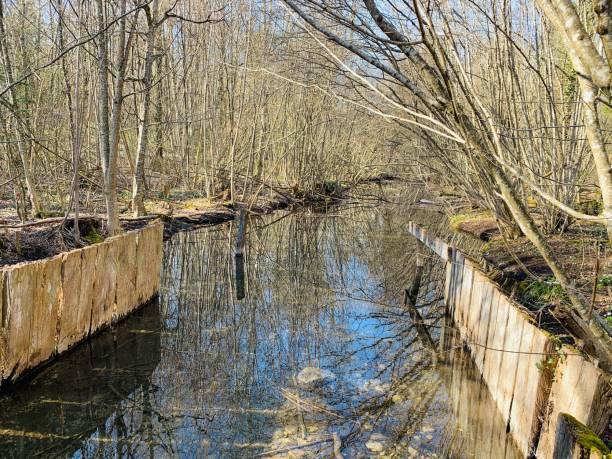 A calm river stock photo