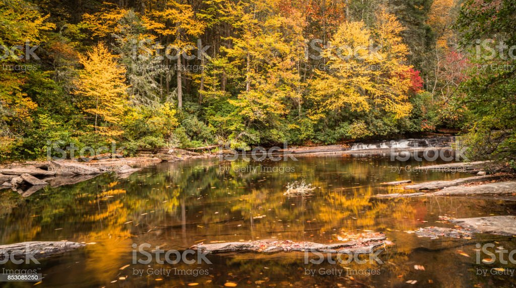 calm river surrounding by forest in fall colors stock photo