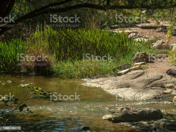 Photo of Calm section of river with rocks in water and on banks, in forest woods