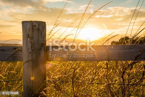 Fence in a spring time rural landscape at a calm sunny afternoon.