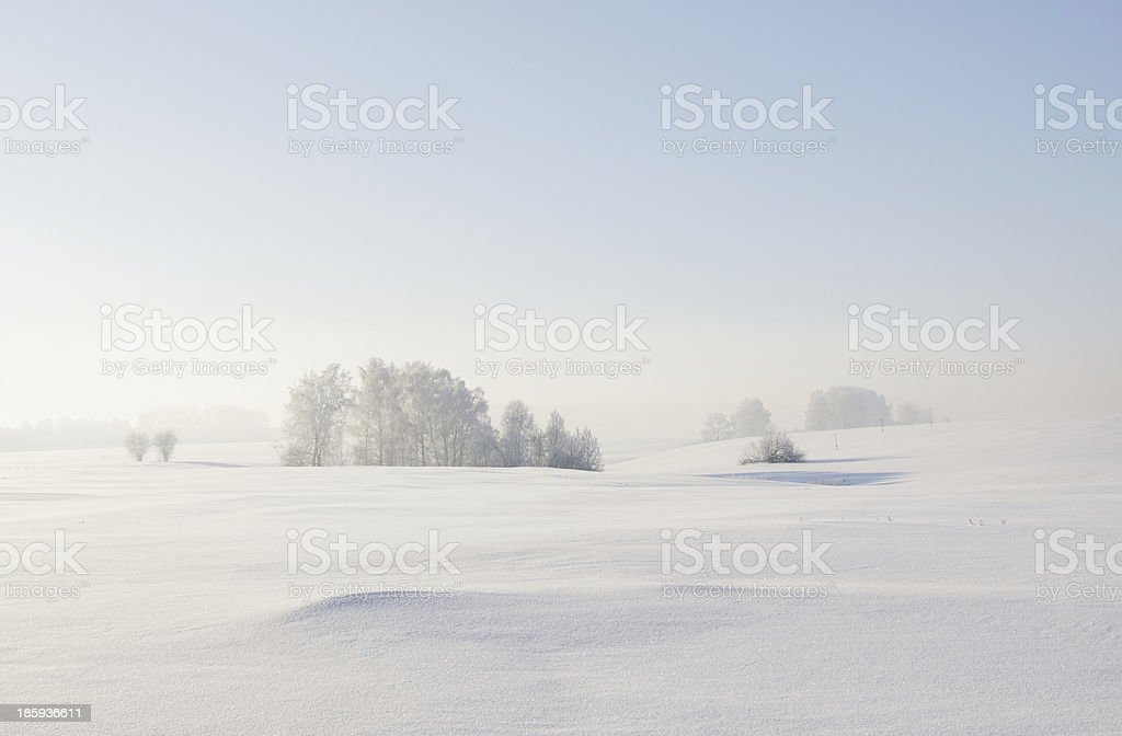 Calm winter landscape