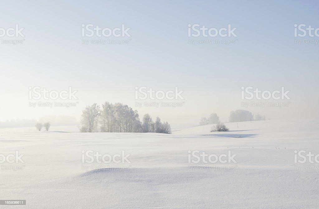 Calm winter landscape stock photo